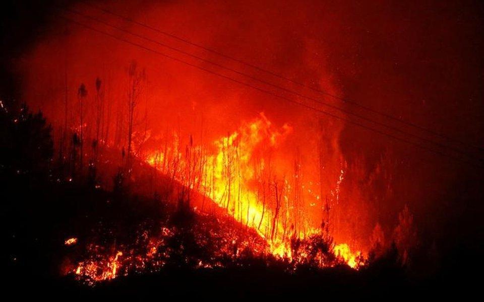 Chamas de um incêndio florestal em Carvalho, Portugal. 19/06/2017 REUTERS/Rafael Marchante