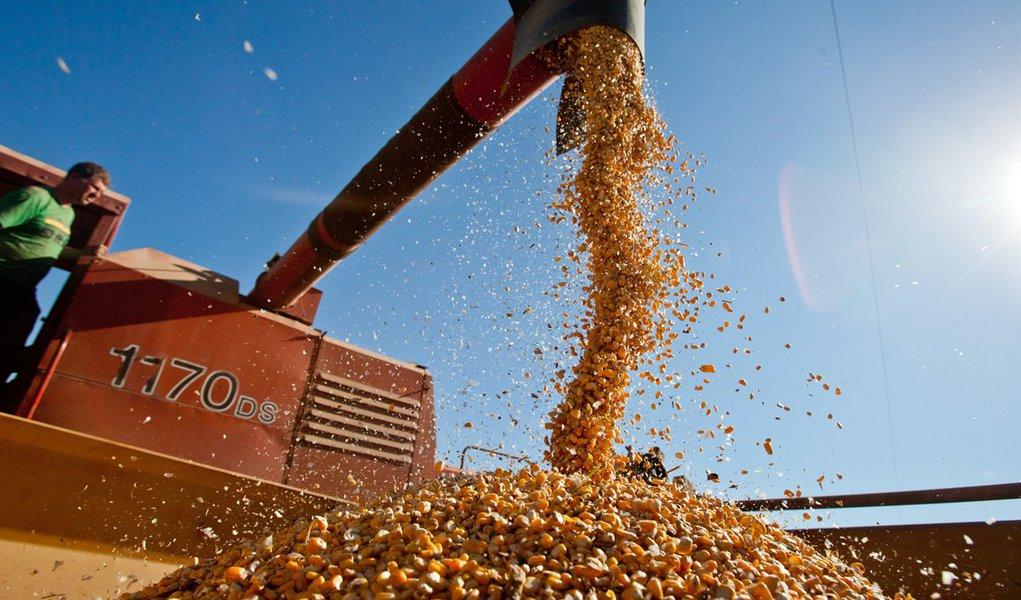 SERTÃO SANTANA, RS, BRASIL, 10.07.13: Colheita de milho em Sertão Santana. Foto: Pedro Revillion/Palácio Piratini