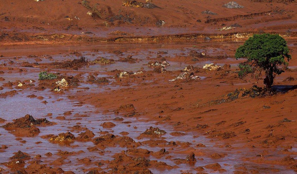 Distrito de Bento Rodrigues totalmente coberto por lama depois do rompimento da barragem do Fundão da mineradora Samarco, em Mariana (MG) 6/11/ 2015. REUTERS/Ricardo Moraes