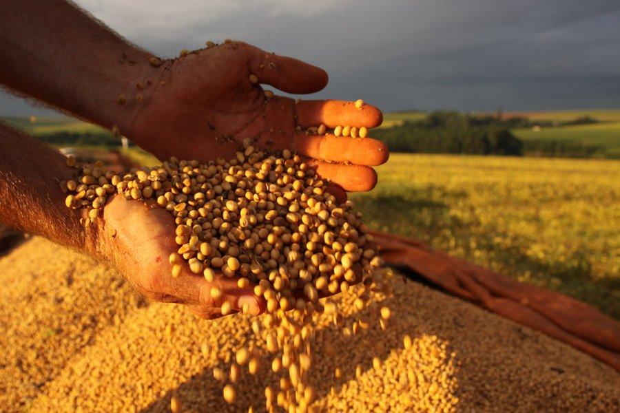 CASCAVEL/PR - 16-02-2011 - Colheita e planta��o de soja no interior de Cascavel. Foto Jonas Oliveira