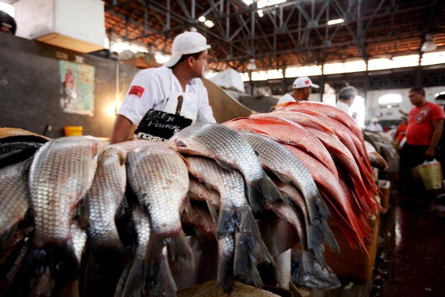 A partir desta sexta-feira, 20, está proibida a saída de pescado do Estado do Pará. Decreto, assinado pelo governador Simão Jatene, que determina a proibição foi publicado na edição de hoje do Diário Oficial do Estado e tem validade até o dia 3 de abril.
