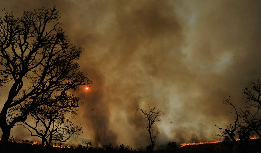Cerrado registra 22 mil focos de incêndio em seis meses