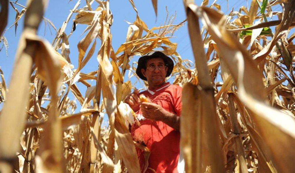 Estiagem prejudicou agricultores em SC