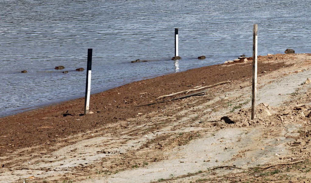 A family of Capybaras swim past water level markers at Jaguari dam in Braganca Paulista, 100km (62 miles) from Sao Paulo February 20, 2014. The Jaguari dam is part of the Sao Paulo's Cantareira system water supply, which is drying due to drought-like cond