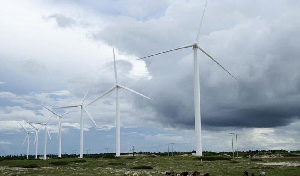 Gado pasta próximo a turbinas eólicas em Paracuru, no litoral do Ceará. O rápido leilão de reserva desta sexta-feira contratou energia de 1.505 megawatts (MW) em projetos eólicos ao preço médio de 110,51 reais por megawatt-hora (MWh), um desconto de 5,54
