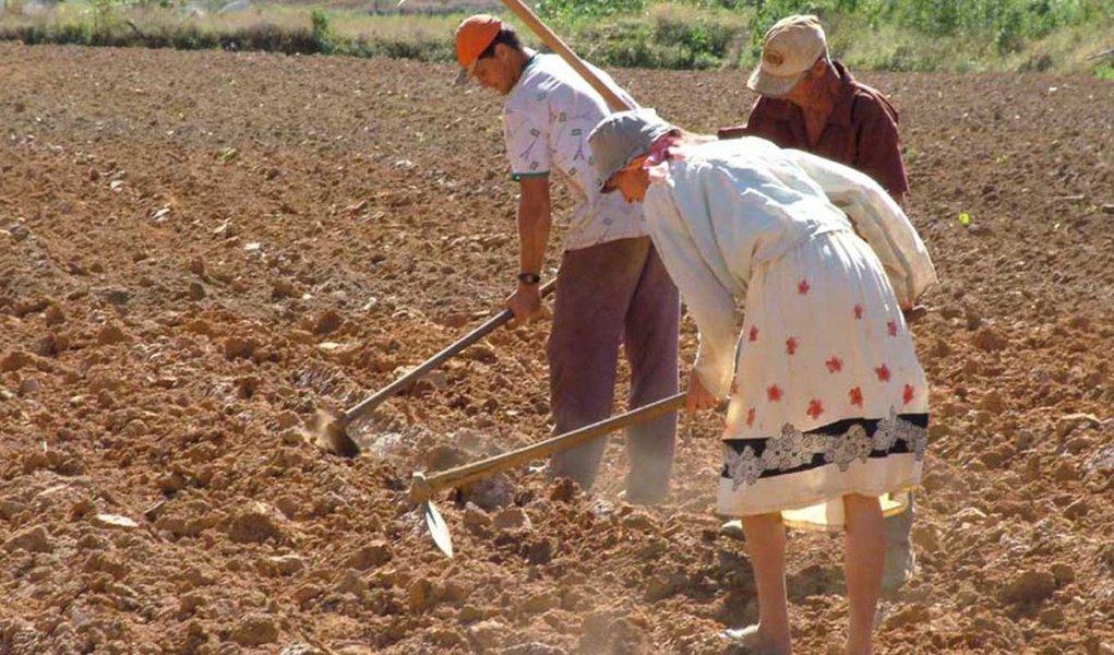Reforma Agrária terá mais beneficiados na Bahia