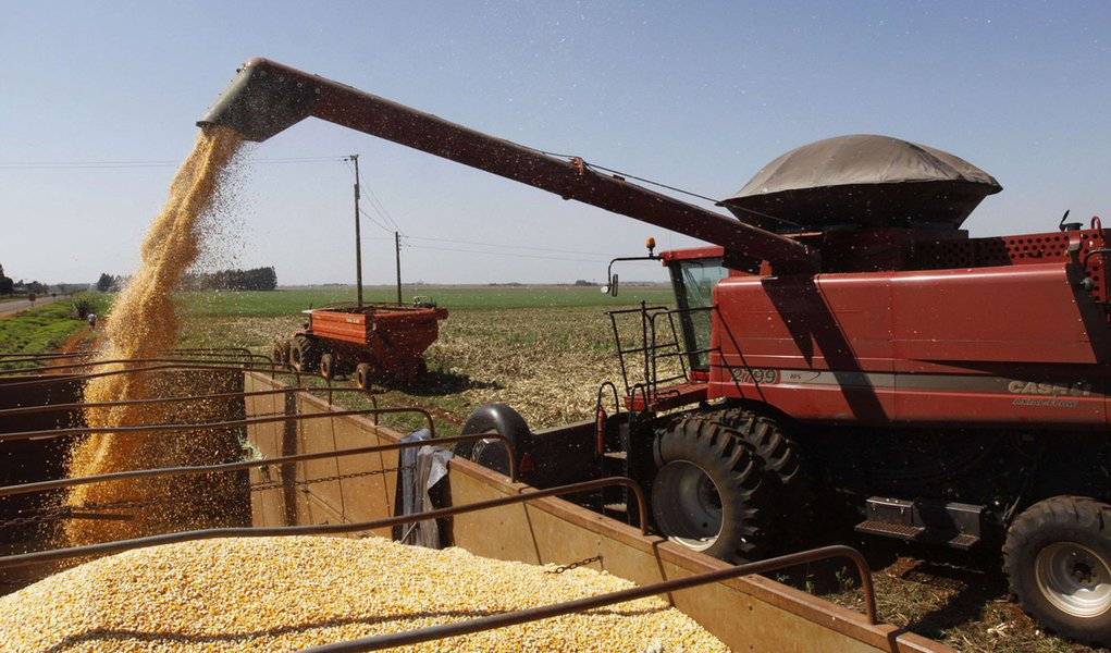 A combine harvester loads corn kernels on a truck at a corn field in La Paloma city, Canindeyu, about 348km (216 miles) northeast of Asuncion August 7, 2012. Corn export is second only to soybean export in Paraguay. REUTERS/Jorge Adorno (PARAGUAY - Tags: