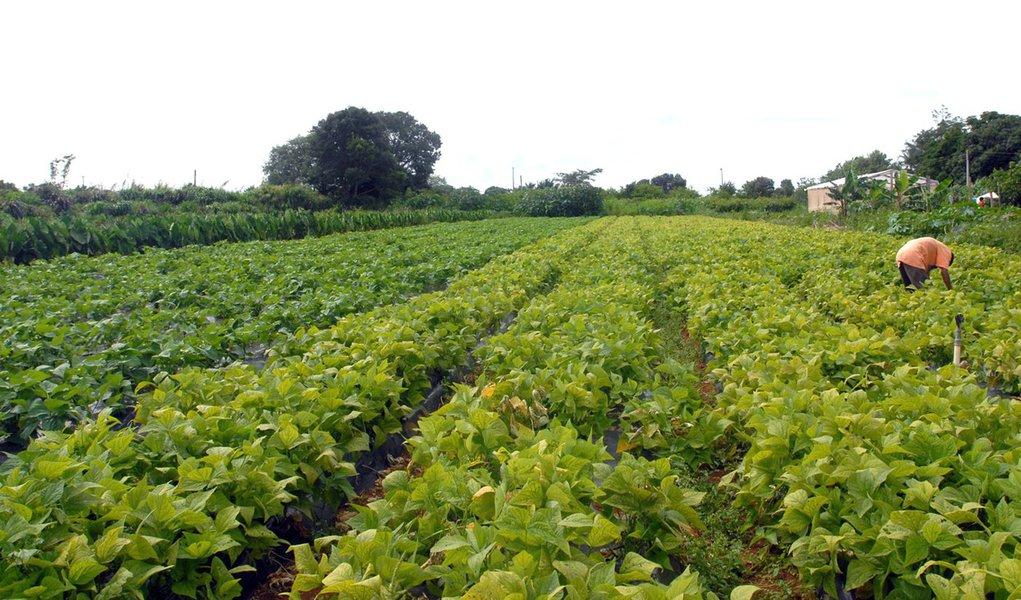 Feira promove a agricultura no Nordeste