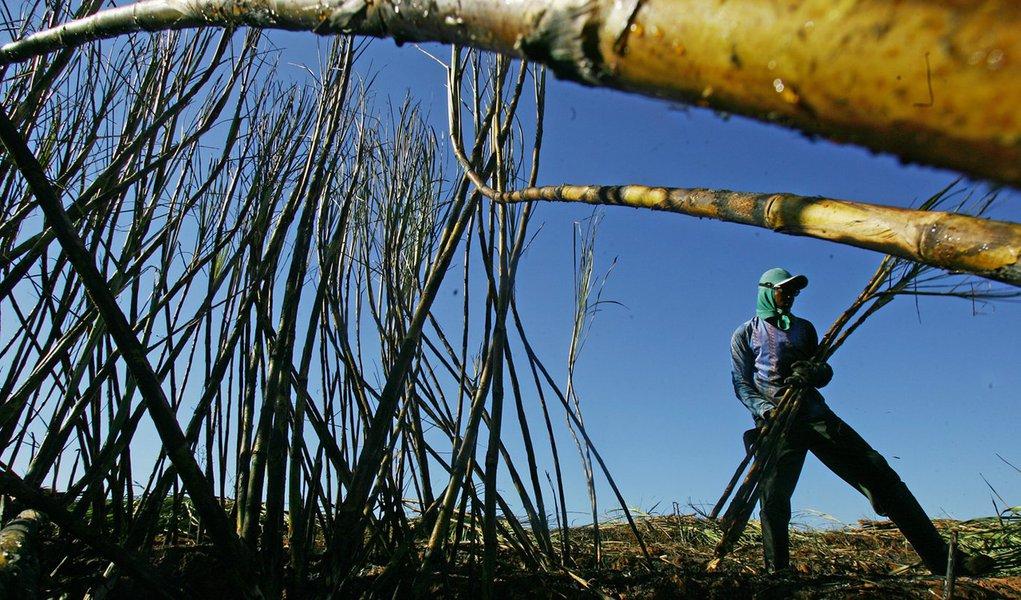 BB estuda financiamento para produtores de cana