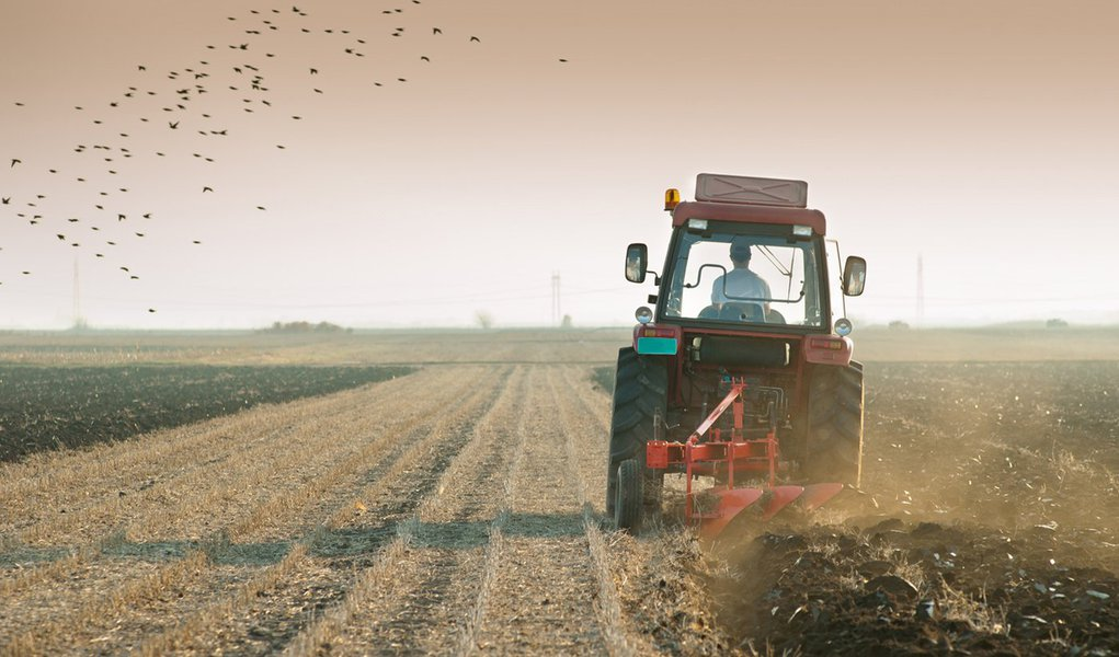 Agricultores nordestinos na mira da tecnologia