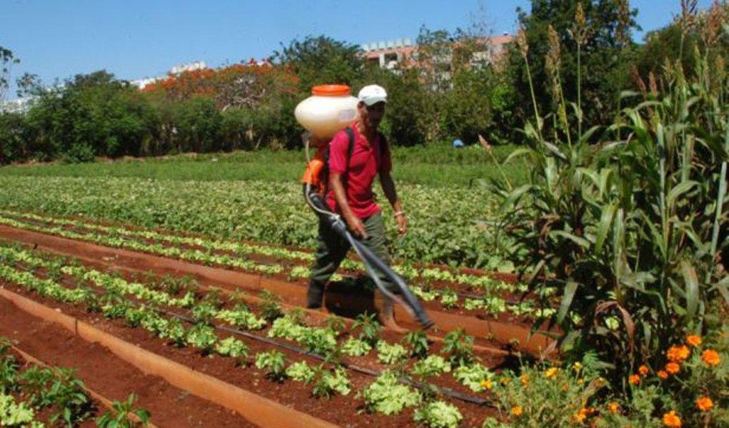 Cuba: transformações no campo são laboratório para reformas