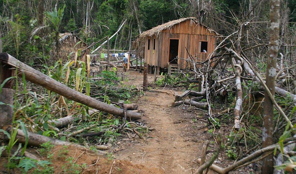 Comunidades amazônicas são ameaçadas por madeireiros