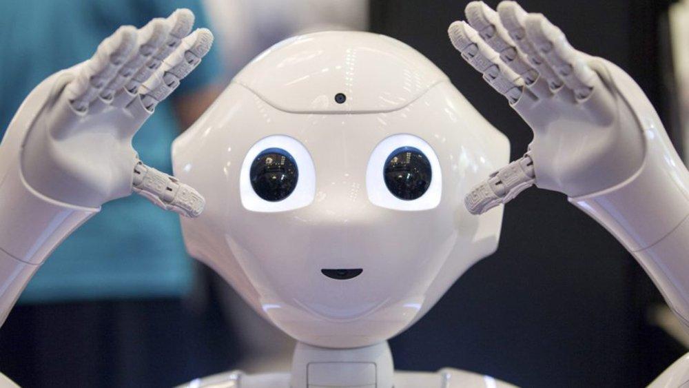Após o sucesso do Kindle e do Echo, a Amazon supostamente está trabalhando em uma outra grande aposta: robôs domésticos; o projeto é supervisionado por Gregg Zehr, que dirige a divisão de pesquisa e desenvolvimento da Amazon, o Lab126; foi esse mesmo centro de pesquisa que, há um tempo atrás, desenvolveu o Echo – smart speaker com a inteligência artificial Alexa – e outros dispositivos Fire