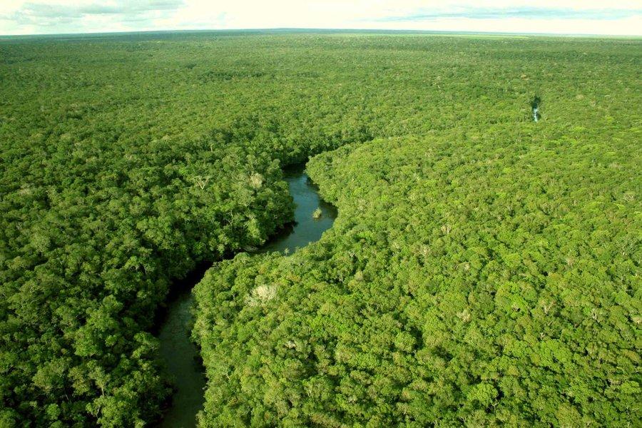 A Amazônia Azul, o mar territorial brasileiro, onde se encontram o pré-sal e quase a totalidade de nossas reservas de petróleo, pode ser estimada em 7,5 trilhões de USD (barril a US$ 50).Ao optar pelo Ministério da Segurança Pública, ao invés de um Ministério da Amazônia, estaremos dando a prova de buscar a farsa à verdade, o ganho estrangeiro ao desenvolvimento brasileiro