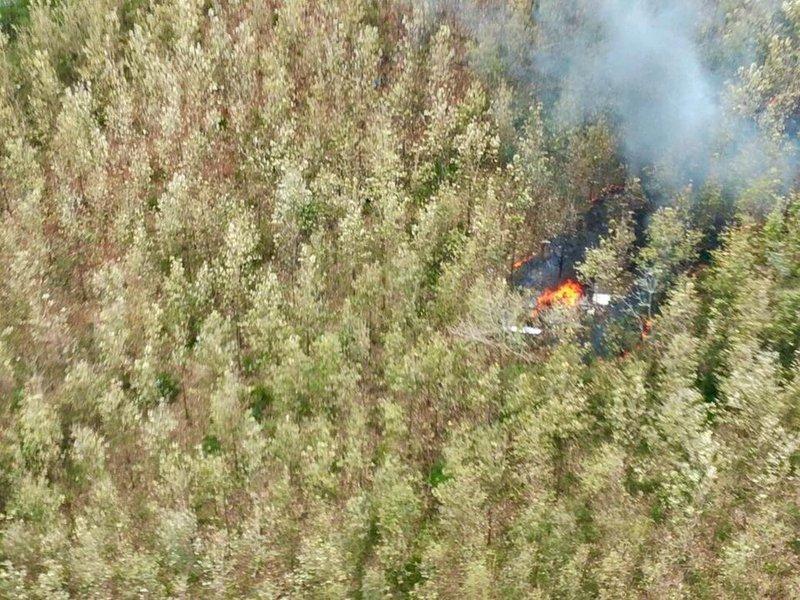 Segundo o governo costa-riquenho, a aeronave, pertencente a uma companhia privada, levava 12 passageiros, sendo dez estrangeiros, quando sofreu a queda em uma área de floresta da província de Guanacaste; de acordo com a agência AFP, a suspeita é a de que todos os passageiros e os tripulantes estejam mortos
