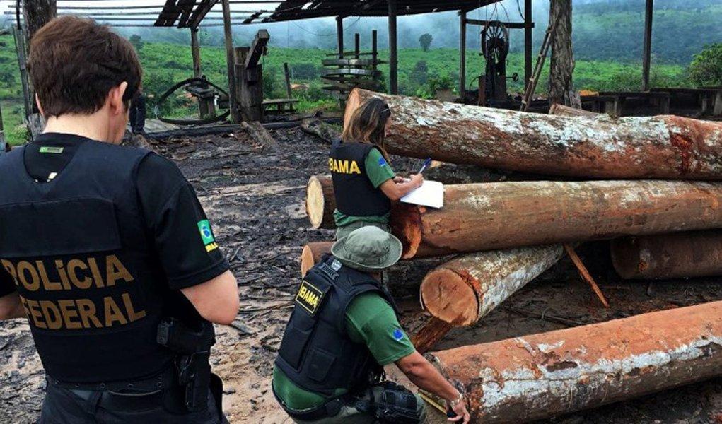 """Polícia Federal informou que desmontou um esquema de transporte clandestino de madeira extraída ilegalmente da floresta amazônica destinada a grandes comerciantes madeireiros no Brasil, na Europa e Estados Unido; Operação Arquimedesestá em andamento há mais de um mês e já reteve até o momento 444 contêineres; """"O material apreendido até o momento, se colocado de forma linear, cobriria um percurso de 1.500 quilômetros, o que equivaleria à distância entre Brasília e Belém, aproximadamente"""", disse a Polícia Federal"""