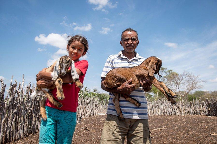 Inclusão socioprodutiva e acesso a mercados para mais de 17 mil famílias de agricultores baianos; este é o resultado do primeiro ciclo de investimento do projeto Bahia Produtiva, executado pela Companhia de Desenvolvimento e Ação Regional (CAR), empresa pública vinculada à Secretaria de Desenvolvimento Rural (SDR); no total, já foram aplicados R$ 163,7 milhões, contemplando 502 ações para agricultura familiar, nos 27 Territórios de Identidade do estado