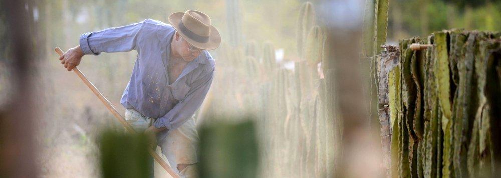 Agricultores familiares dos 168 municípios que compõem a área mineira da Sudene têm até o próximo dia 30 de setembro para fazer adesão ao programa; nessa mesma data, encerra-se o prazo para que as prefeituras municipais manifestem interesse em participar do seguro; o Garantia Safra é um programa federal que funciona como seguro pago a agricultores familiares com perdas de mais de 50% da safra devido à seca ou excesso hídrico