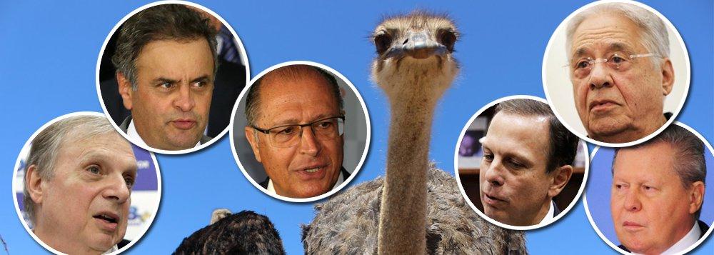 """""""A convenção que o PSDB realiza neste sábado terá uma única serventia: elegendo Geraldo Alckmin para a presidência do partido, os tucanos deixam de ter Aécio Neves como ocupante licenciado do cargo desde a eclosão do escândalo JBS. Não querem nem que ele apareça no evento. Fora isso, o encontro estará mais para uma festa de avestruzes, aquelas aves que, diante de situações arriscadas, enterram a cabeça na areia"""", avalia a colunista do 247 Tereza Cruvinel sobre a situação dos tucanos; ela destaca que o principal motivo para a convenção, o desembarque do governo Temer, saiu de pauta e não será discutido; """"Quanto mais se enrolam em suas dúvidas, mais isoladas vão ficando no campo da própria centro-direita"""", diz Tereza"""