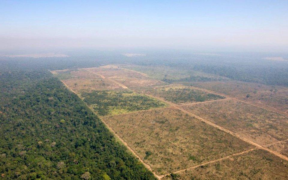 Os valores dizem respeito a quatro projetos: a redução da Floresta Nacional de Jamanxim (PA), a perda de arrecadação com a chamada MP 759 – a chamada Lei da Grilagem, que trata da regularização de imóveis na Amazônia, incluindo frutos de apropriação ilegal -, a MP 793, que concedeu alívio de dívidas para ruralistas, e as emendas destinadas a parlamentares que integram as bancas, aponta reportagem do Sul 21