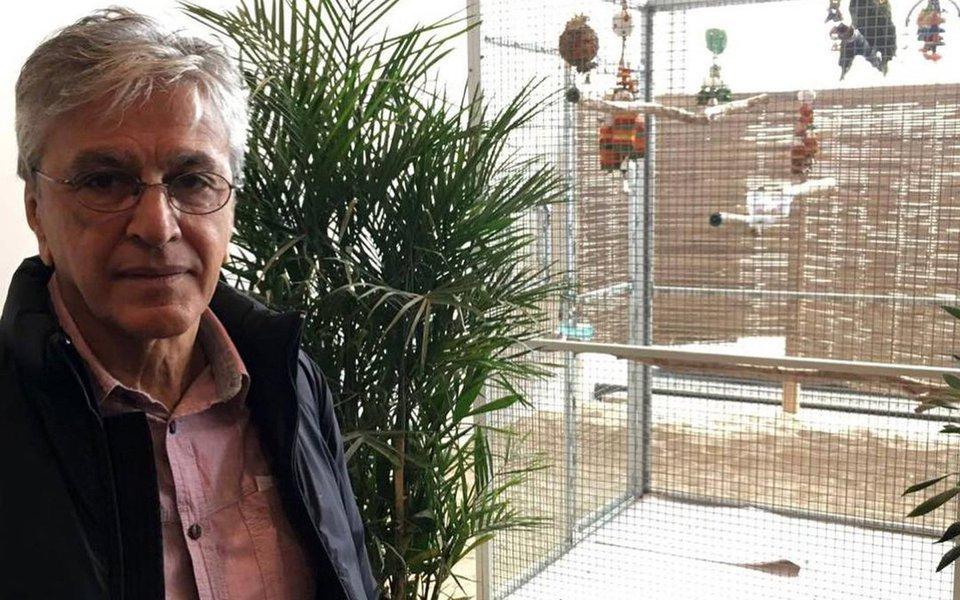 O coletivo de artistas342agora, que conta com Caetano Veloso, terá uma nova frente: o 342amazônia; a classe artística organiza um showmício no Dia da Amazônia, no próximo dia 5, em Copacabana, contra o decreto de Temer que libera a exploração mineral em uma reserva ambiental no pulmão do Brasil; grupo também entrará com ação na Justiça contra a medida