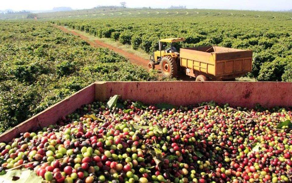 As exportações do agronegócio mineiro totalizaram US$ 6 bilhões no período de janeiro a setembro deste ano, com crescimento de 11% em relação ao mesmo período do ano passado; o segmento contribuiu com 31% do total da pauta mineira de exportações no período; o café, principal produto da pauta de exportações do agronegócio, representou 41,3% do valor total exportado pelo segmento no período de janeiro a setembro; os dados foram analisados pela Secretaria de Agricultura, Pecuária e Abastecimento (Seapa) com base nas informações do Ministério de Desenvolvimento, Indústria e Comércio Exterior (MDIC)