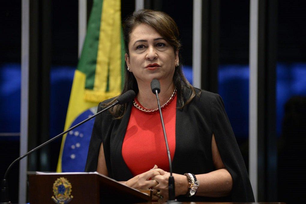 Plenário do Senado durante sessão deliberativa ordinária. Em discurso, senadora Kátia Abreu (PMDB-TO). Foto: Jane de Araújo/Agência Senado