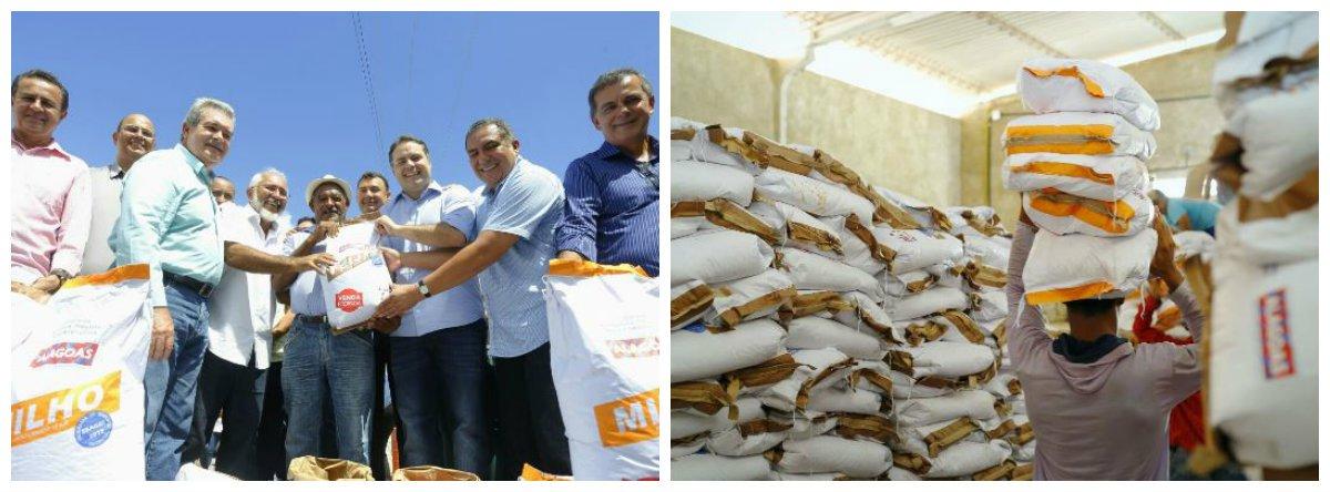 O governo de Alagoas entregou a produtores da agricultura familiar de oito municípios do Alto Sertão alagoano 23,5 mil quilos de sementes de feijão, milho e sorgo; distribuição beneficiou mais de 11 famílias dos municípios de Delmiro Gouveia, Água Branca, Canapi, Piranhas, Mata Grande, Pariconha, Olho D'Água do Casado e Inhapi