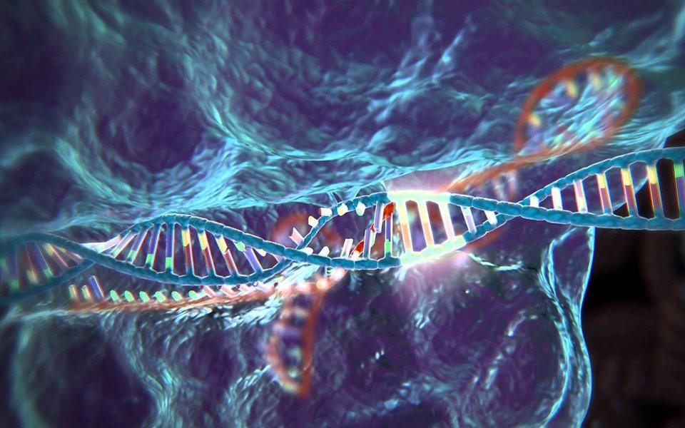 Um método revolucionário e avançadíssimo para modificar os genes de qualquer ser vivo. Seu potencial é imenso, sobretudo nas áreas da medicina, biologia e tecnologia. Mas o método também desperta algumas dúvidas. Quem explica é a bióloga italiana Anna Meldolesi.