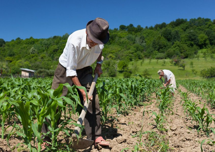 As condições do trabalhador são o sol, a enxada, o corte de cana, jornadas longas desde sua juventude, e isso não pode ser equiparado com o funcionário que está dentro de um escritório, no ar condicionado. A saúde do agricultor não tem os mesmos padrões do trabalhador urbano