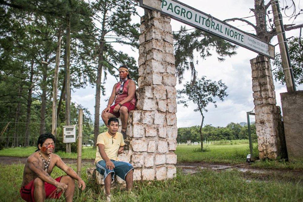 A Justiça Federal concedeu uma liminar em ação da Procuradoria-Geral do Estado (PGE-RS) pedindoa reintegração de uma área pertencente à Fundação de Pesquisa Agropecuária (Fepagro), em Maquiné, no Litoral Norte; o local foi ocupado no dia 27 de janeiro por cerca de 30 famílias Mbya Guarani, que reivindicam a área de mata atlântica como um território indígena; vídeo