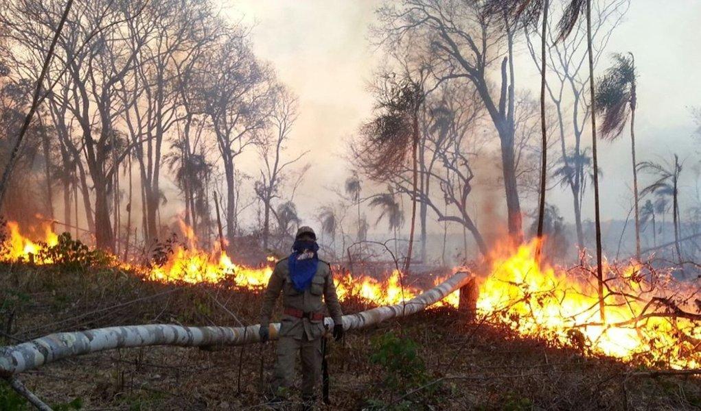 O fogo voltou a atingir parte da Terra Indígena Araribóia, no sudoeste do Maranhão, onde vivem cerca de 12 mil indígenas; oCentro Nacional de Prevenção e Combate aos Incêndios Florestais está com 40 brigadistas no local, que já perdeu 43 mil dos 413 mil hectares de vegetação desde agosto por conta dos incêndios