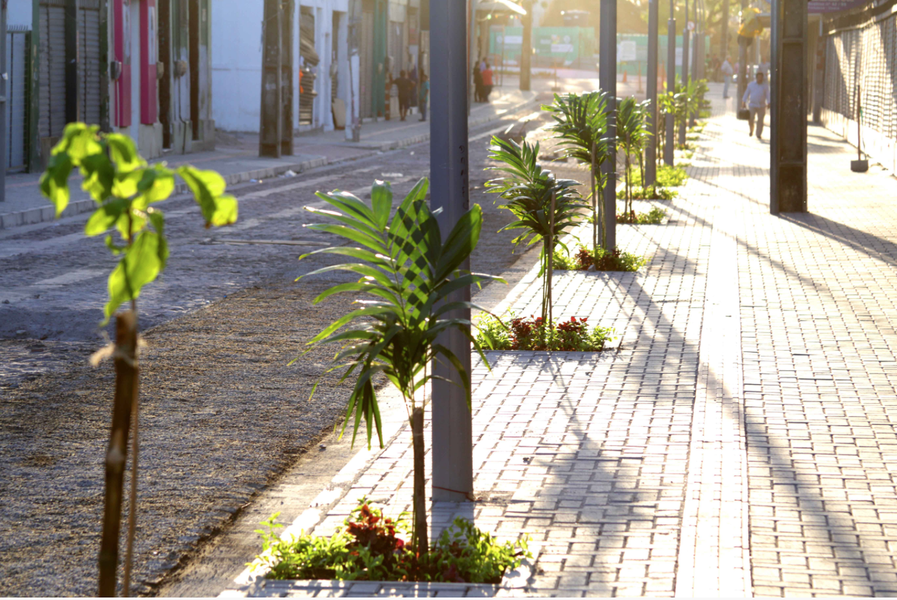 As obras de requalificação da rua José Avelino e Alberto Nepomuceno, no Centro, serão entregues à população pelo prefeito Roberto Cláudio (PDT) nesta sexta-feira (8), após quatro meses de trabalhos. Com investimento de R$ 2 milhões, as vias ganharam nova iluminação, calçadas mais largas e acessíveis, ciclofaixa, ecoponto, recapeamento asfáltico, pavimentação e paisagismo ao longo dos passeios e canteiro central