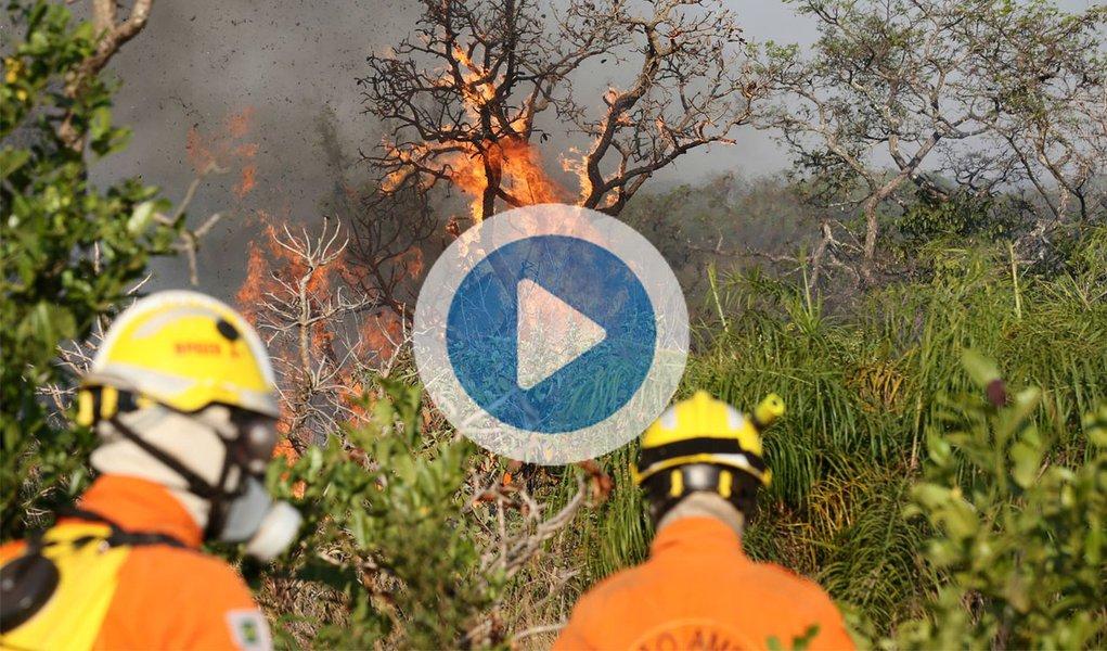 """Um incêndio de grandes proporções está destruindo o Parque Nacional da Chapada dos Veadeiros. Desde a última terça-feira (17), o fogo já consumiu cerca de 35 mil hectares, o equivalente a 14,6% da reserva considerada patrimônio natural da humanidade; segundo Fernando Tatagiba, chefe do Parque Nacional, trata-se de um incêndio criminoso. """"Alguém colocou fogo na vegetação dos dois lados da rodovia GO-118 e no interior de um aceiro, uma área desmatada que serve justamente como medida de prevenção de incêndios. Certamente se trata de uma pessoa que conhece a região e a nossa dinâmica de combate às chamas"""", relata; nas redes sociais, internautas, ONGs e entidades ambientais divulgam fotos e vídeos do desastre; assista acima"""