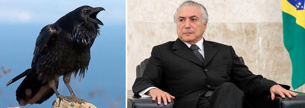 O processo de cassação arrefeceu no fim de semana em virtude da morte do ministro do STF Teori Zavascki, mas, após o luto, vem com tudo para deixa Temer no bico do corvo