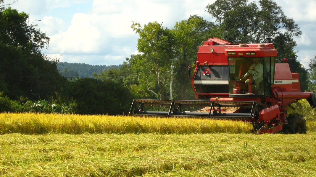 O pagamento do Garantia Safra 2015/2016 vem atendendo em todo o Estado do Ceará 167.639 agricultores de 112 municípios que aderiram ao programa. Dos 184 municípios cearenses, apenas quatro não aderem ao programa por não possuirem zona rural