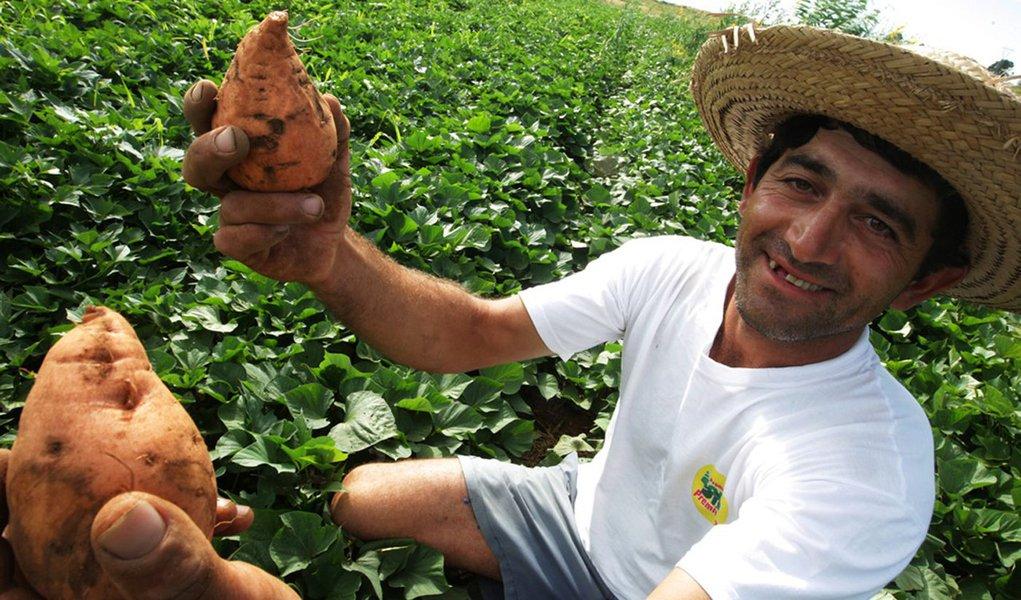 O Instituto de Assistência Técnica e Extensão Rural do Piauí (Emater) tem sido um dos principais agentes de articulação do Programa de Aquisição de Alimentos (PAA), no interior do estado; este programa é de fundamental importância para o agricultor familiar, pois tem contribuído para a melhoria da renda dos pequenos agricultores; o Programa beneficia diretamente 211 famílias de produtores rurais em oito municípios, e indiretamente 1.688 agricultores e agricultoras; foram apresentadas oito propostas e a previsão é que seja acessado cerca de R$ 850 mil em recurso