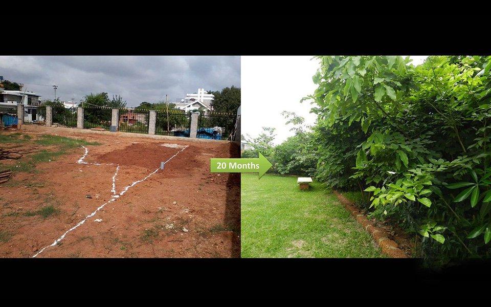 Shubhendu Sharma cria métodos de florestação que tornam muito mais fácil plantar e manter miniflorestas riquíssimas em biodiversidade. Na foto acima, antes e depois: O terreno vazio, e 20 meses após a intervenção de Shubendu Sharma.