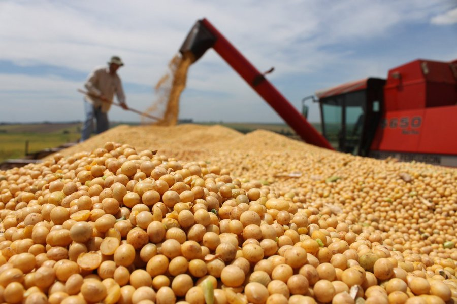 O Departamento de Agricultura dos EUA (USDA) elevou nesta quarta-feira a sua previsão de safra de soja 2016/17 do Brasil em 1 milhão de toneladas, para um recorde de 102 milhões de toneladas; se confirmada, a produção da temporada atual, que está sendo plantada, teria uma recuperação expressiva ante a safra passada, quando o Brasil colheu 96,5 milhões de toneladas, segundo o USDA; já a exportação de soja do Brasil, o maior exportador global, foi prevista em 58,4 milhões de toneladas, estável ante o levantamento de setembro