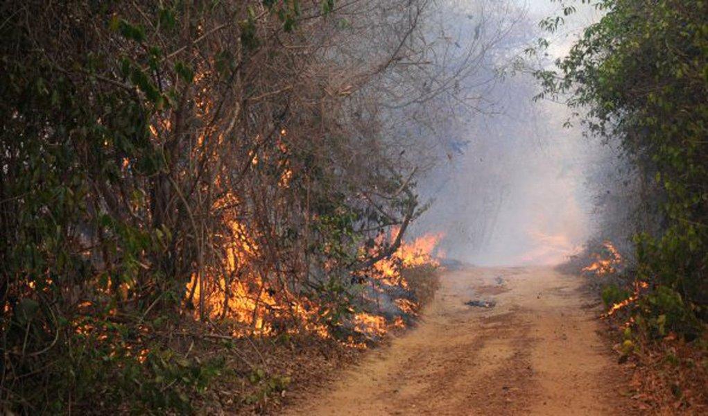 Está proibido atear fogo em florestas ou qualquer tipo de vegetação em todo o território piauiense durante o período compreendido entre 19 de outubro a 30 de novembro de 2016; a decisão foi tomada pelo governo do Piauí, por meio da Secretaria Estadual do Meio Ambiente e Recursos Hídricos – SEMAR; de 1 a 9 de outubro foram registrados 500 focos de incêndio no estado