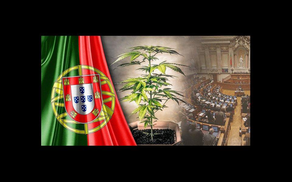 """Da Europa aos EUA alerta-se que a """"guerra à droga"""", lançada por Nixon em1971, não apenas não impediu o aumento do consumo como fortaleceu os cartéis. Nos últimos anos, a estratégia mundial de combate à droga baseou-se na militarização do combate ao narcotráfico. Tornou-se evidente que esta abordagem fez mais mal do que bem. Portugal é o exemplo mais bem sucedido de legalização da droga."""