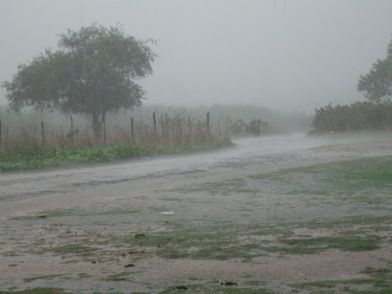 O maior índice foi registrado no município de Icó, com 130,0mm