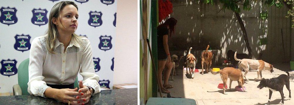 A Polícia Civil de Alagoas indiciou quatro pessoas pelo envenenamento, em dezembro do ano passado, de 30 animais que resultou na morte de 12 cães atendidos pelo Núcleo de Educação Ambiental São Francisco de Assis (Neafa); investigações apontaram que os próprios administradores da ONG e os representantes legais da instituição são os responsáveis pelos crimes