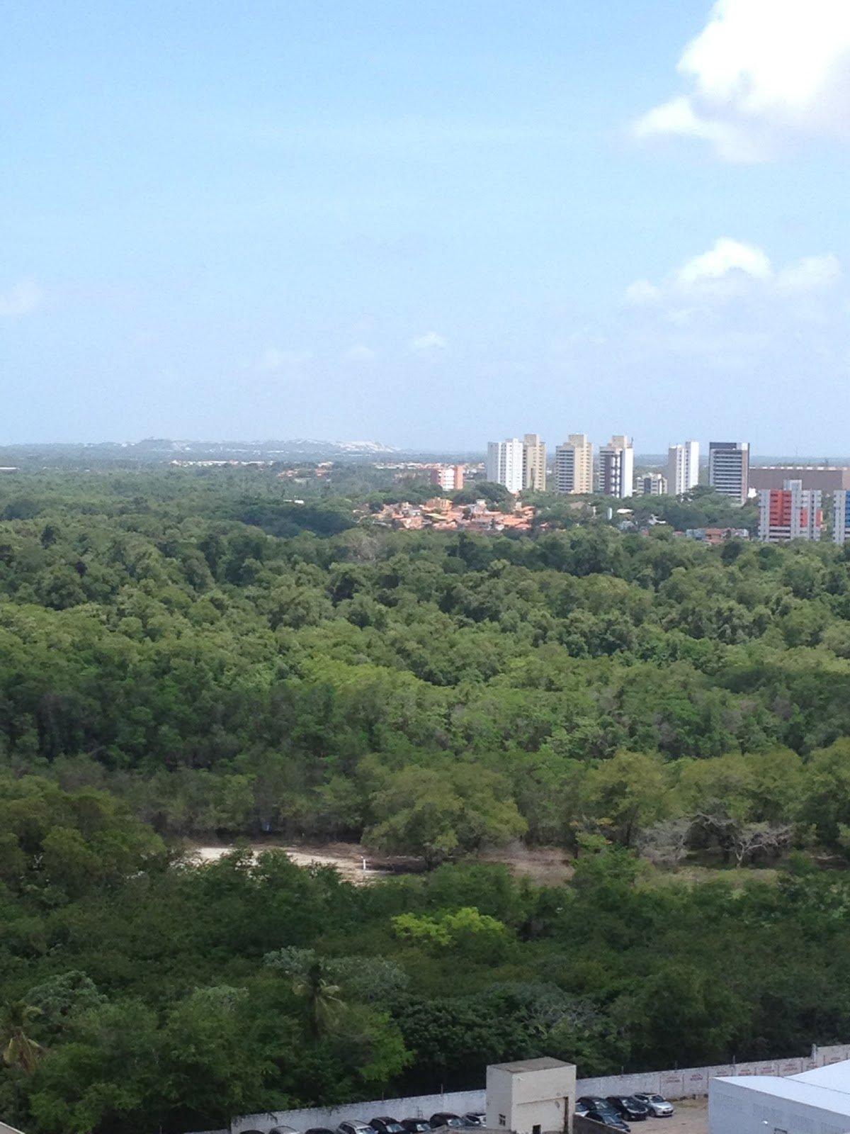A proposta de mosaico na bacia do Cocó pretende criar uma rede de áreas protegidas de 2.907,44 ha; sendo 1.050,85 ha do Parque Estadual do Cocó