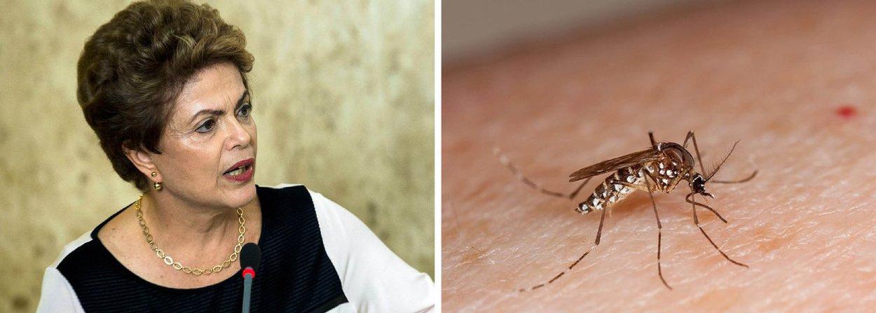 Presidente convocou nesta quinta-feira 21 os ministros da Saúde, Marcelo Castro, e da Integração Nacional, Gilberto Occhi, para fazer um balanço das ações e traçar os próximos passos no enfrentamento ao mosquito, que transmite o vírus Zika, responsável pelo aumento dos casos de microcefalia no país; também participaram os ministros da Casa Civil, Jaques Wagner, e da Defesa, Aldo Rebelo, além do secretário nacional da Defesa Civil, do general Adriano Pereira Júnior, do comandante do Exército, general Eduardo Villas Bôas, e de técnicos do governo
