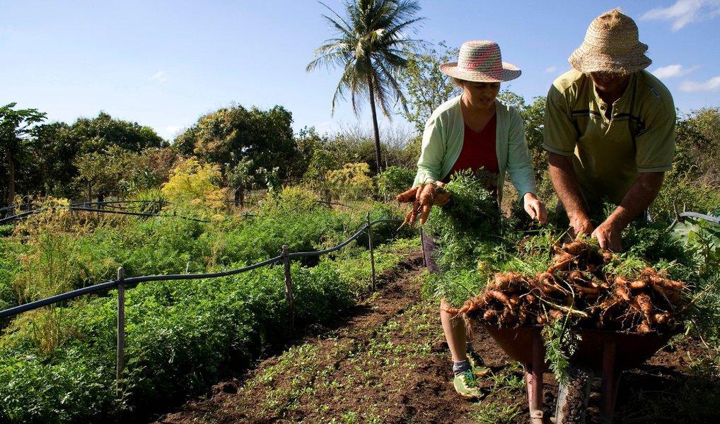 Ministério de Desenvolvimento Agrário anunciou que oPlano Safra da Agricultura Familiar 2016/17 prevê R$ 30 bilhões de reais em crédito para os pequenos agricultores, ante R$ 28,9 bilhões ofertados no ano anterior