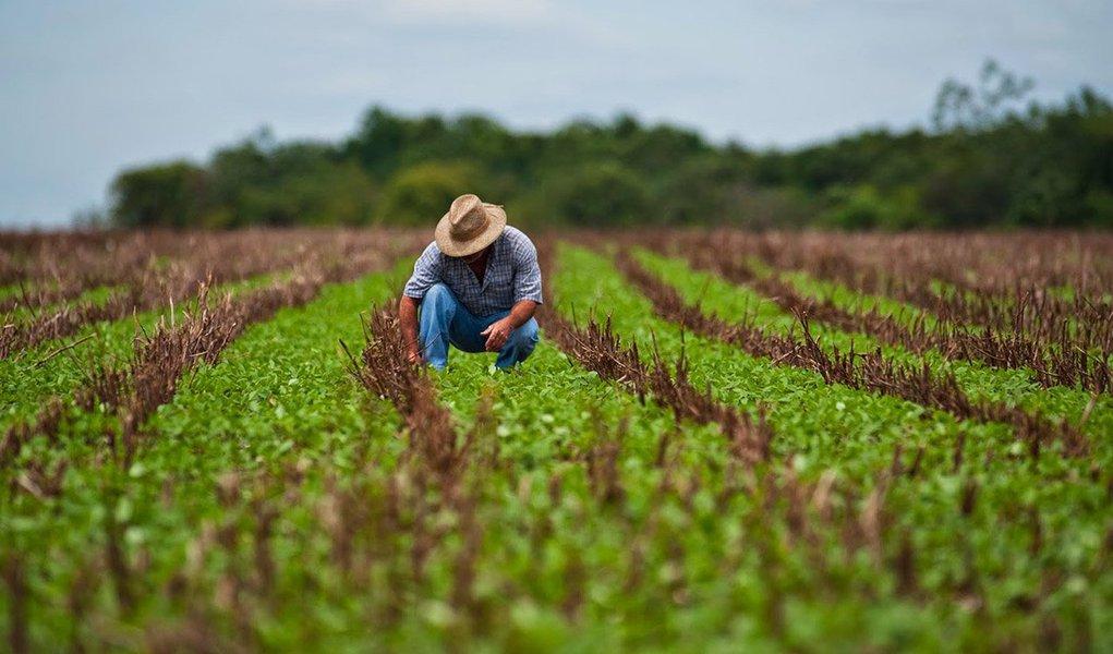 O Plano Safra 2016/2017 vai disponibilizar R$ 202,88 bilhões para produtores rurais; o valor é 8% maior que o da safra anterior, de R$ 187,7 bilhões; o novo Plano Agrícola e Pecuário foi anunciado pela ministra da Agricultura, Pecuária e Abastecimento, Kátia Abreu, em cerimônia no Palácio do Planalto