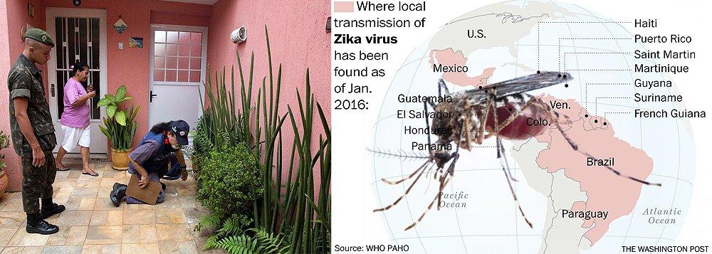 De acordo com a Organização Mundial da Saúde (OMS), o vírus transmitido por meio do mosquito Aedes aegypti e que é suspeito de causar danos aos cérebros de bebês no Brasil deve se espalhar por todos os países das Américas, com a exceção de Canadá e Chile