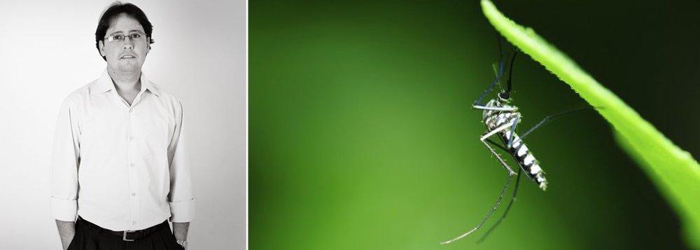 """Originário do Egito, o mosquito se dispersou pelo mundo a partir da África: primeiro para as Américas e, em seguida, para a Ásia; ao chegar às cidades, o Aedes Aegypti passou a ser o responsável por surtos de febre amarela e dengue; a partir de meados dos anos 1990, com a classificação da dengue como doença endêmica, passou a estar em evidência; agora, o epidemiologista e secretário-geral da Sociedade Brasileira de Dengue e Arbovirose, Luciano Pamplona, observa que o Aedes aegypti já pode ser considerado um mosquito doméstico: """"Ele é praticamente um bichinho de estimação"""", diz"""