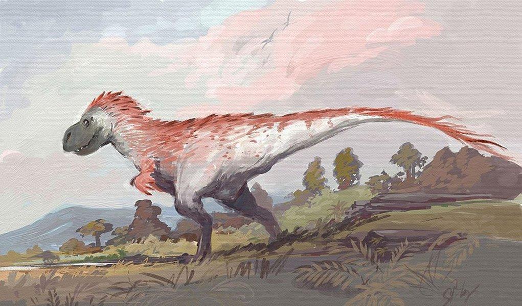 Boa parte dos dinossauros eram emplumados, inclusive aqueles que não tinham asas e portanto não voavam. As plumas eram usadas para a comunicação entre esses animais.